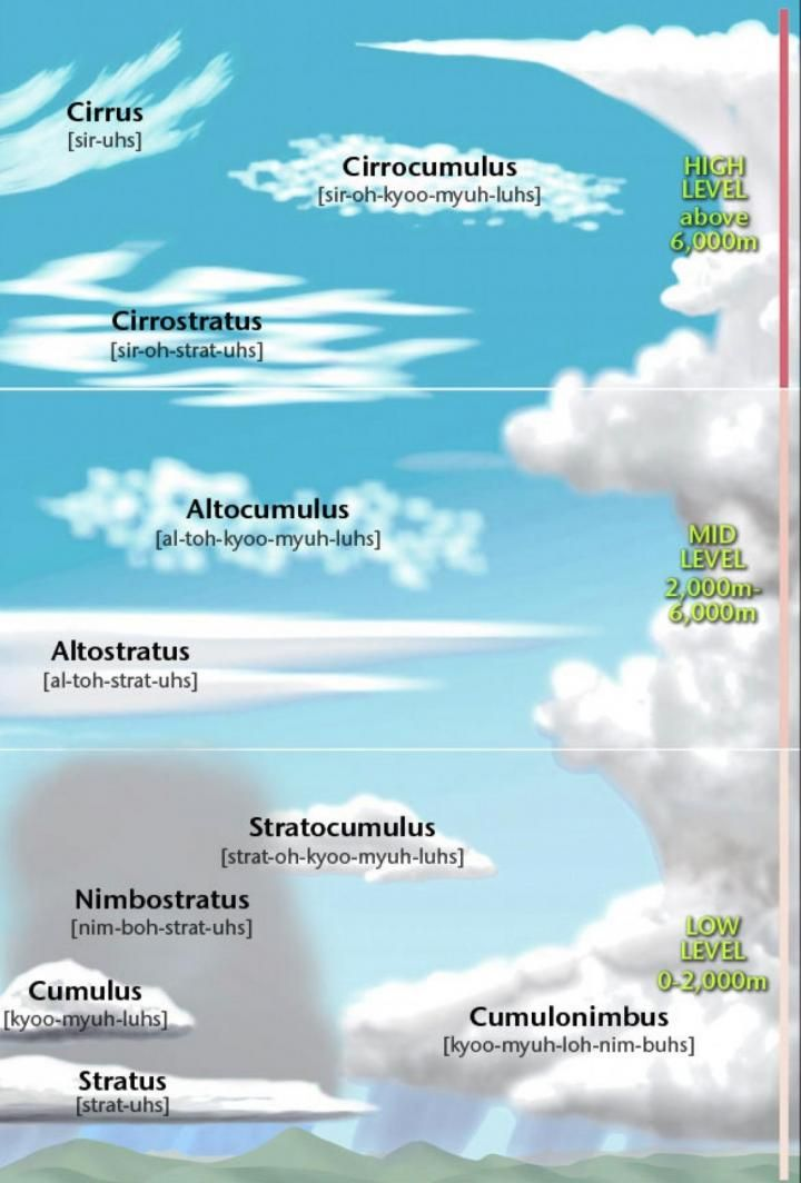 Cloud Guide Types Of Clouds And Weather They Predict Weather Science Cloud Type Earth And Space Science