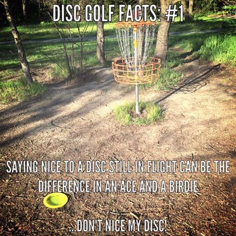 Pin by Celestial Discs on Disc Golf Humor | Disc golf, Disc ...