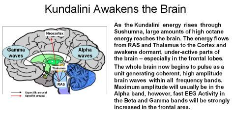 kundalini awakening process - Google Search | Kundalini, Chakras