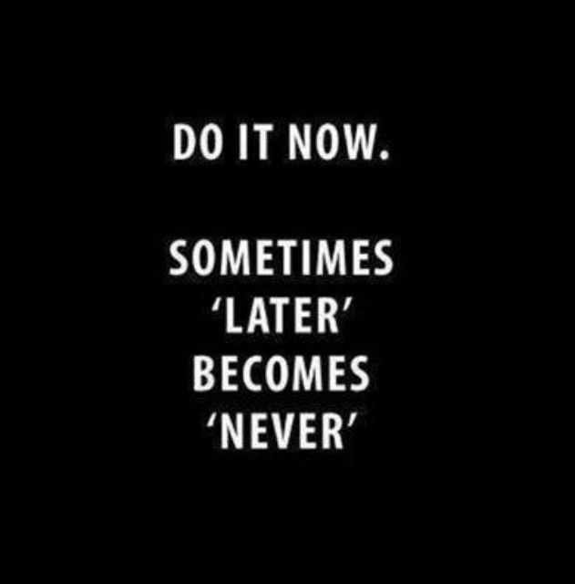 Daily Motivation - Do it NOW...sometimes, LATER becomes NEVER.