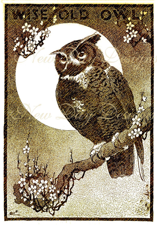 Wise Old Owl Halloween Vintage Illustration Book Scan Instant Digital Download Db025 Halloween Illustration Owl Illustration Vintage Illustration
