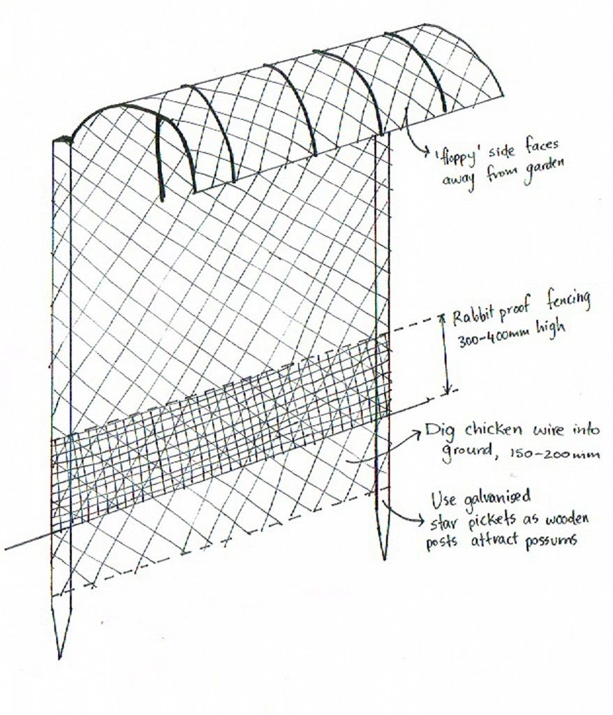 Diagram for floppy fence to keep out wallabiespossumsbunnies e diagram for floppy fence to keep out wallabiespossumsbunnies ccuart Choice Image
