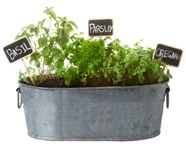 Love An Herb Garden! Really Love The Idea Of Using A Galvanized Planter  With Chalk Board Labels.
