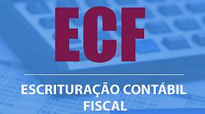 Empresas têm até 29 de julho para entregar Escrituração Contábil Fiscal - Fenacon
