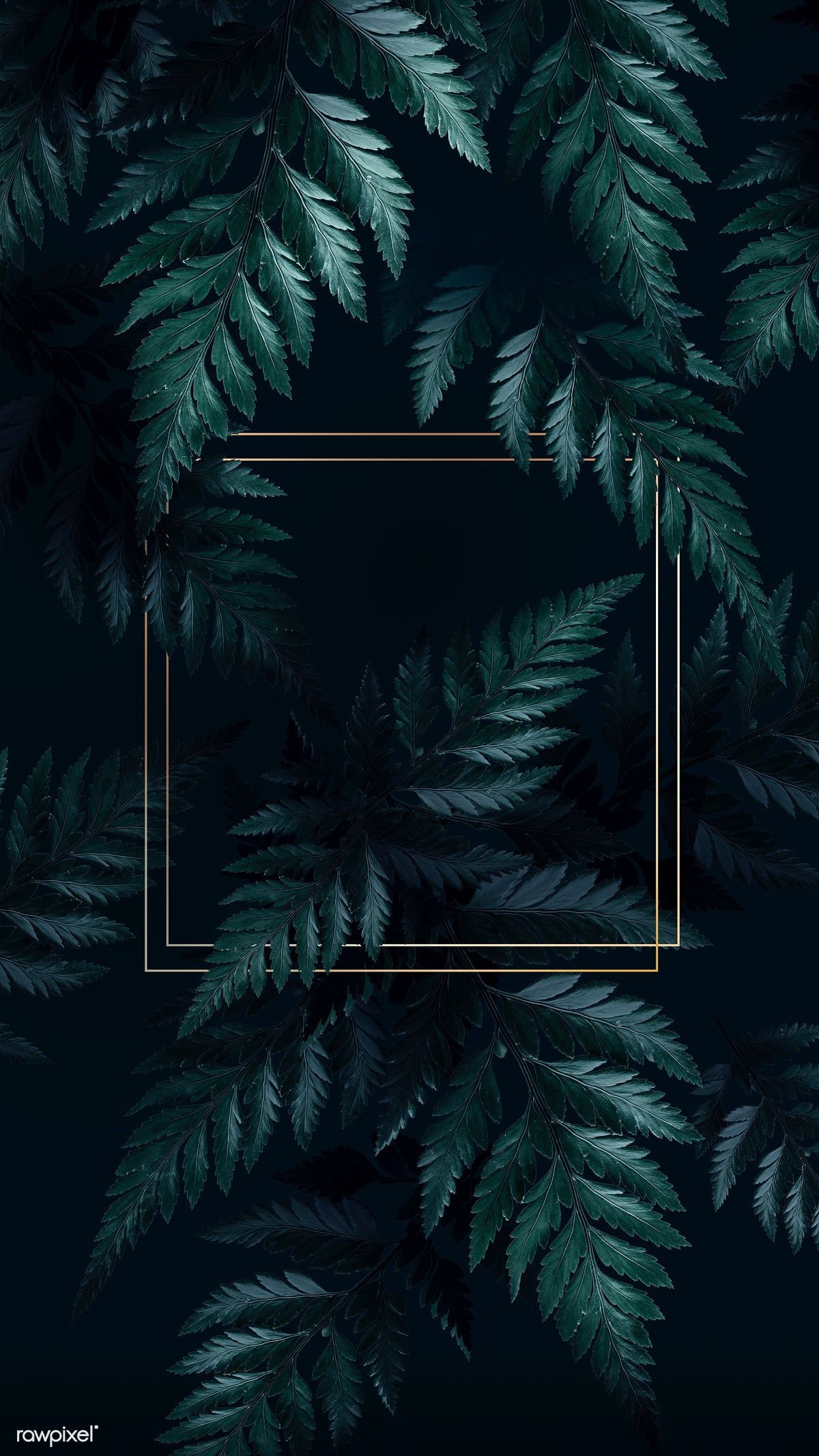 Square golden frame on a tropical background   premium ...