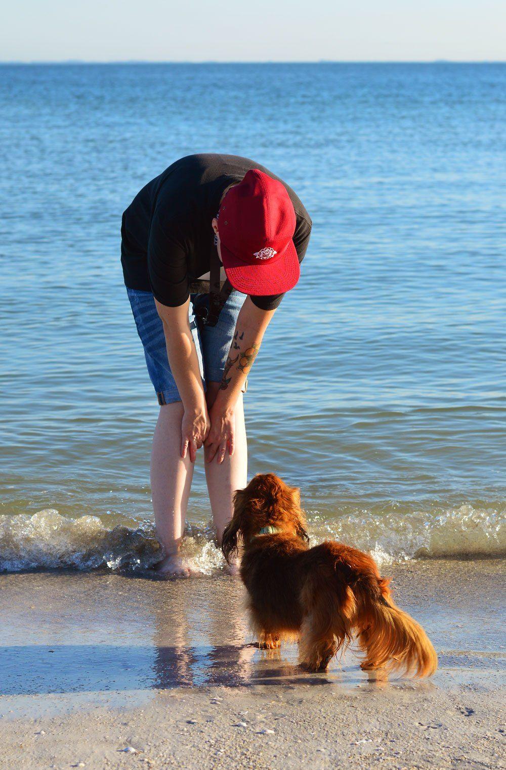 Where To Swim Play And Stay With Your Dog Indialantic To Vero Beach Florida Vero Beach Florida Dog Beach Dog Friendly Beach