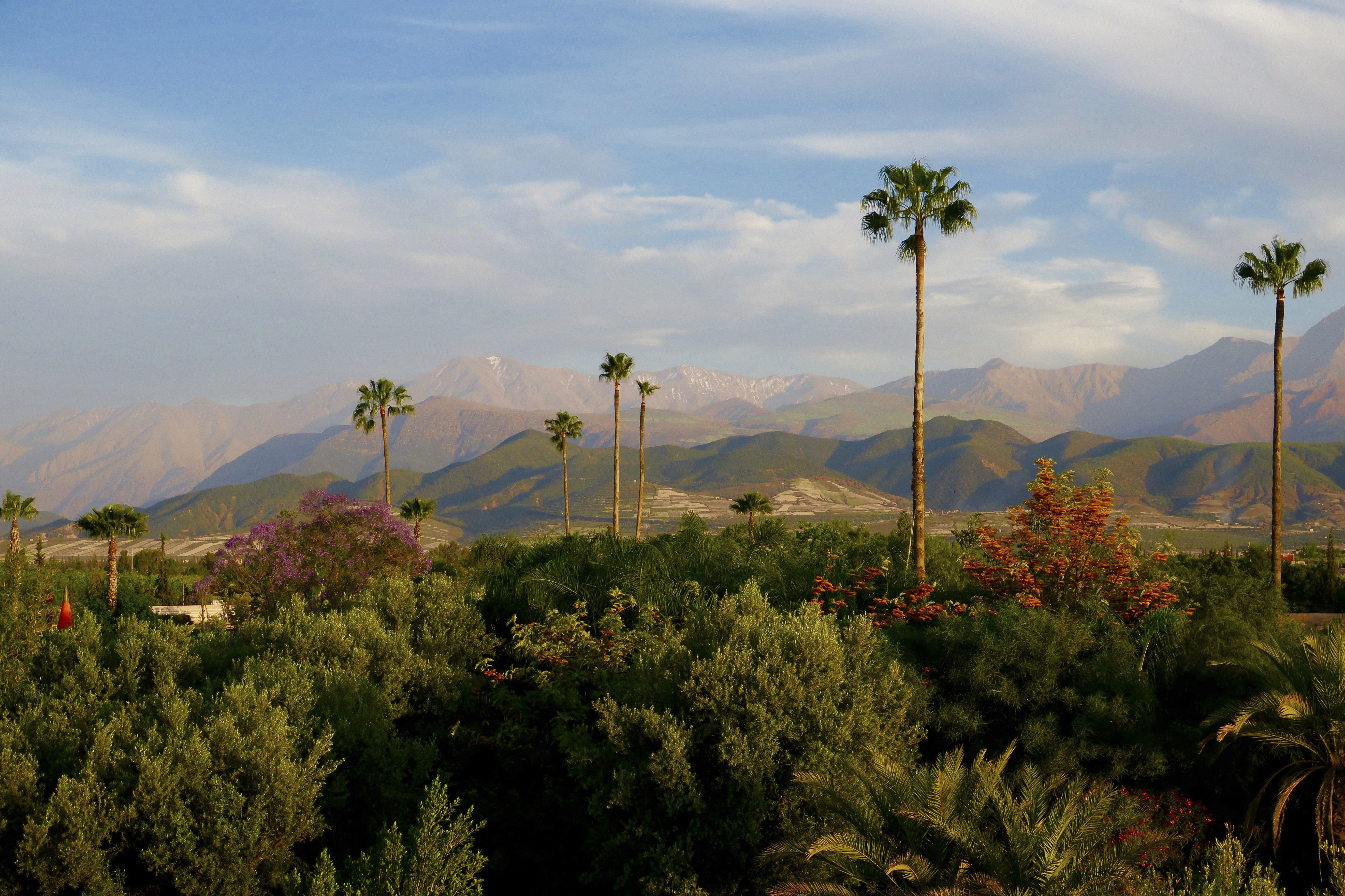 View Of The Atlas Mountains From Anima Marrakech Marrakech Garden Travel Marrakech Mountains Natural Landmarks