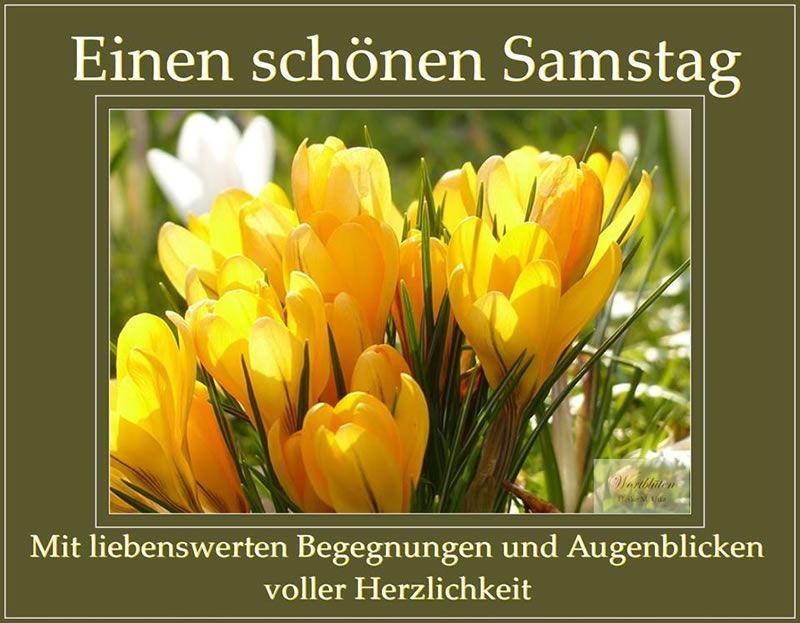 Samstag Bilder Kostenlos: Flowers, Free Images Und Spring
