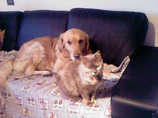 Archie e Clotilde