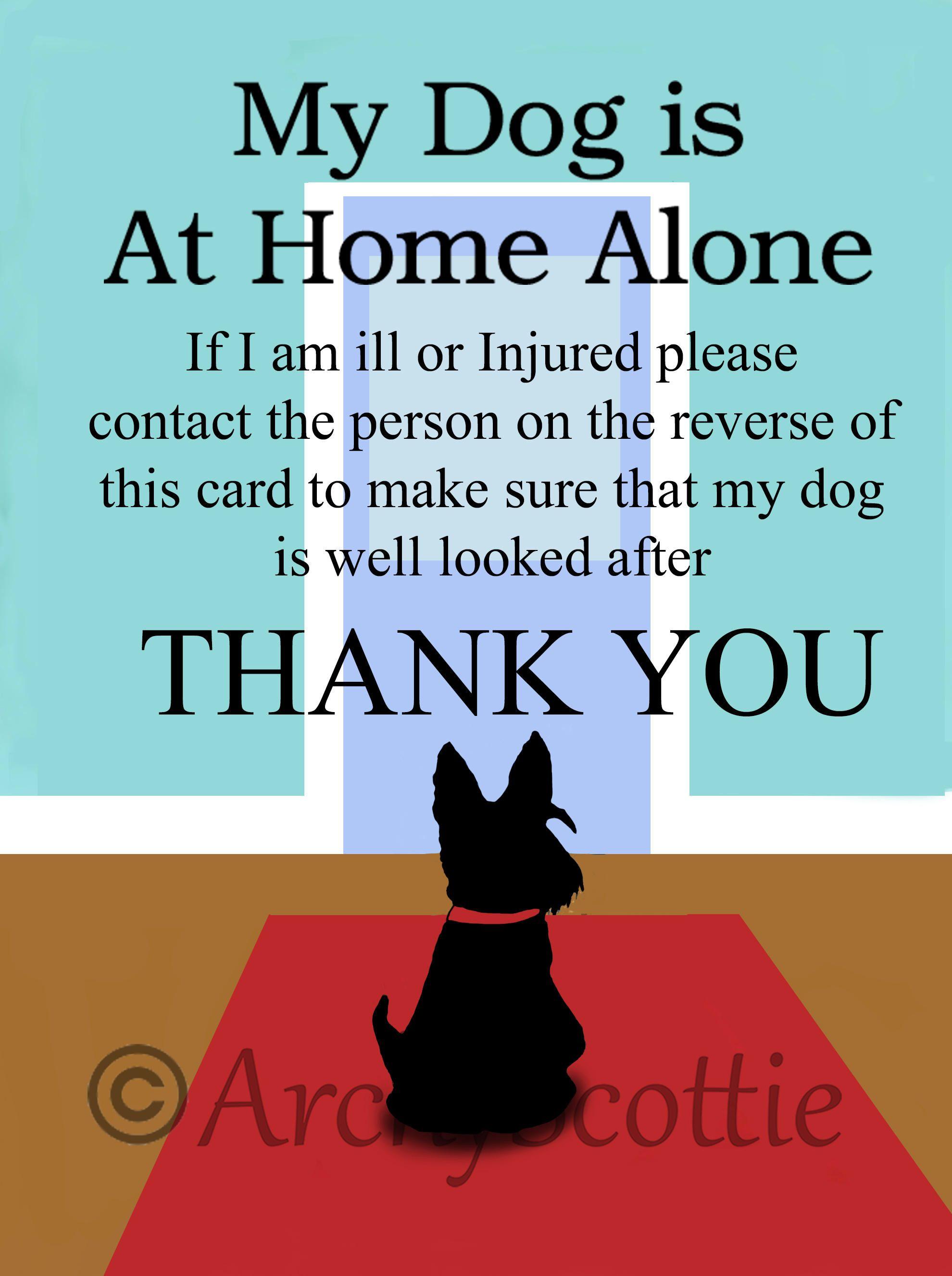 Scottie Dog Pet Alert Emergency Cards Wallet Size 4 Cards Home Etsy Scottie Dog Cheap Dog Toys Pet Dogs