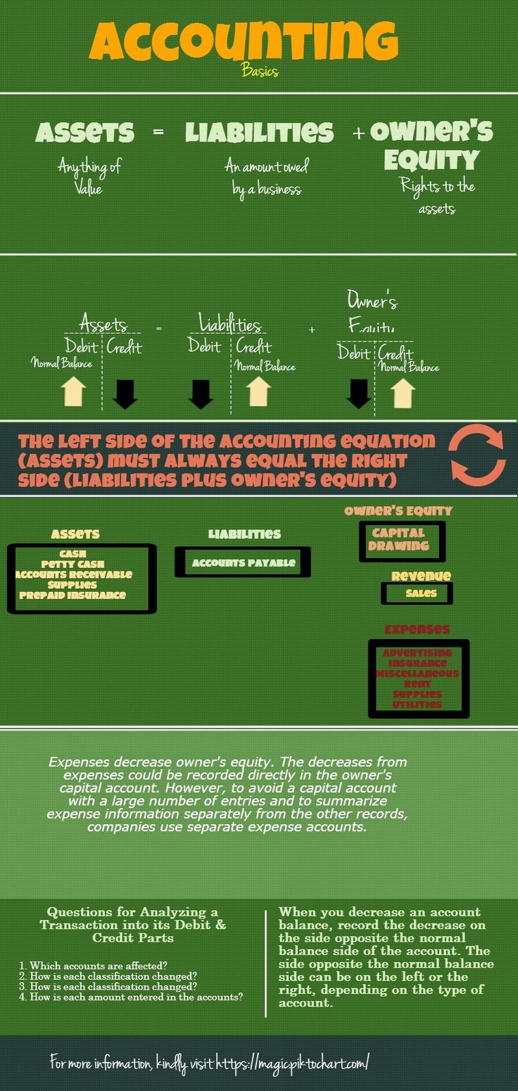 Accounting Basics  Infographics Made In Piktochart