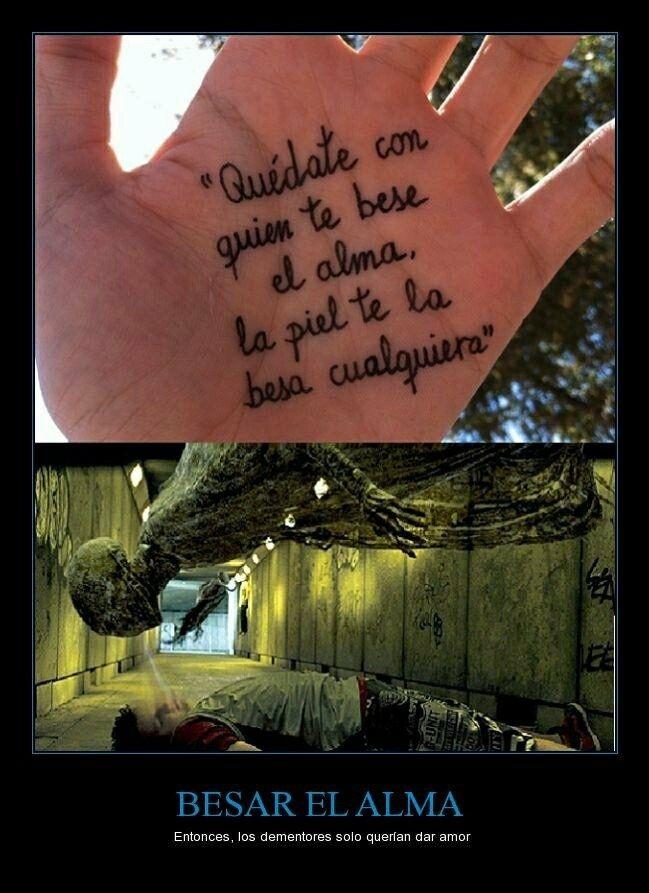 Pobres Solo Querian Amor Harry Potter Pinterest Harry