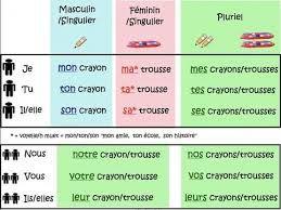Afbeeldingsresultaat voor l\'adjectif possessif | Frans grammaire ...