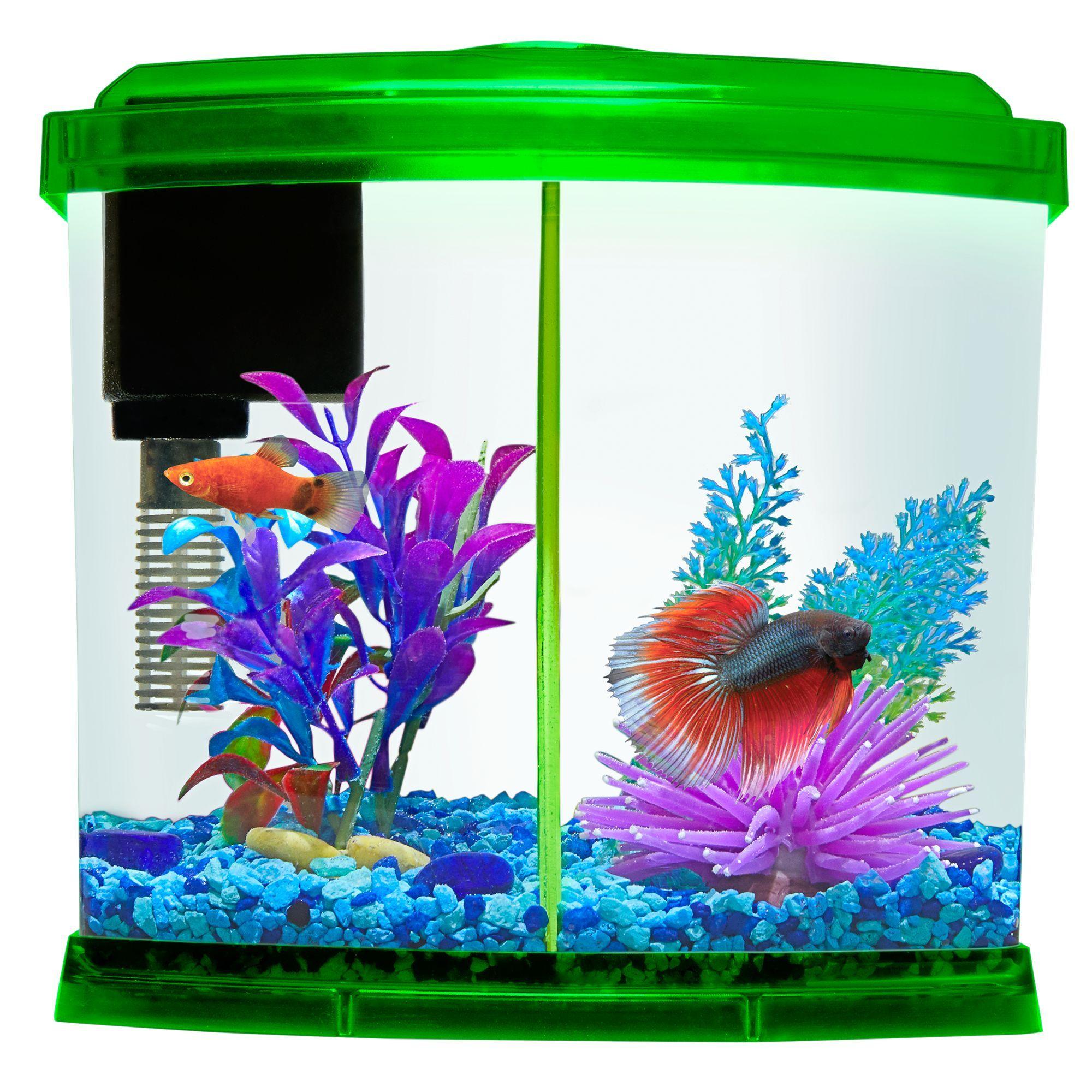 Top Fin® Liquidy Split Aquarium 1 Gallon Wild bird