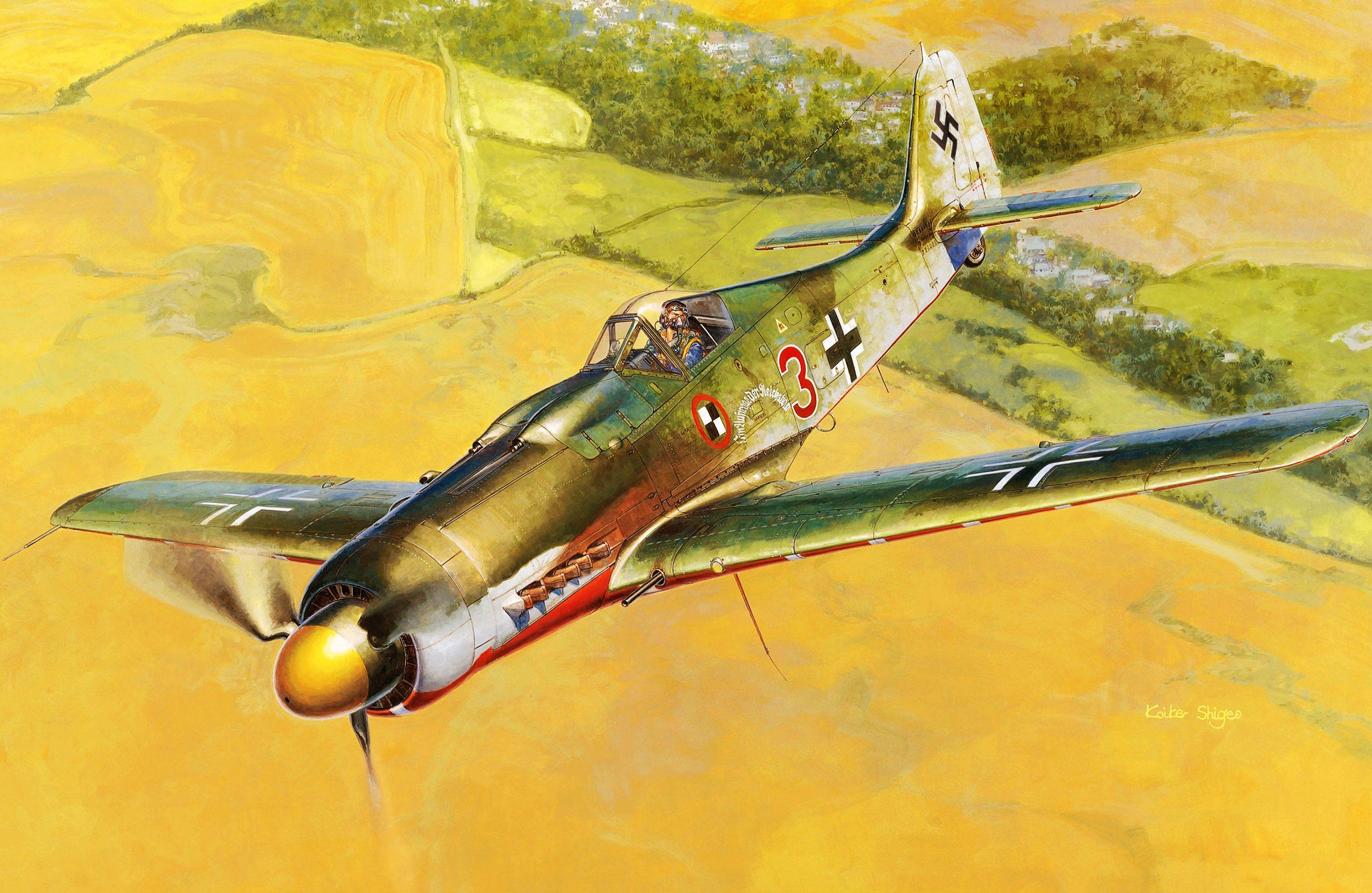 Focke Wulf Fw 190D-9, by Shigeo Koike