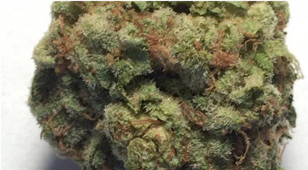 Adelanto has approved more than 50 pot permits. #MarijuanaLegalization #marijuanalaws  #CannabisPermitsActivity #Adelanto