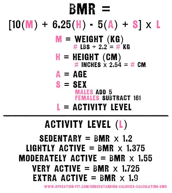 Bmr Equation Fitness Training Plan Bmr Anatomy And Physiology
