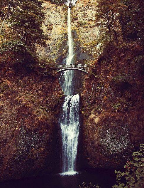multnomah falls / Sarah Ann Loreth