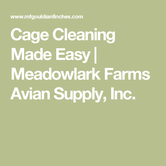 Cage Cleaning Made Easy | Meadowlark Farms Avian Supply, Inc.
