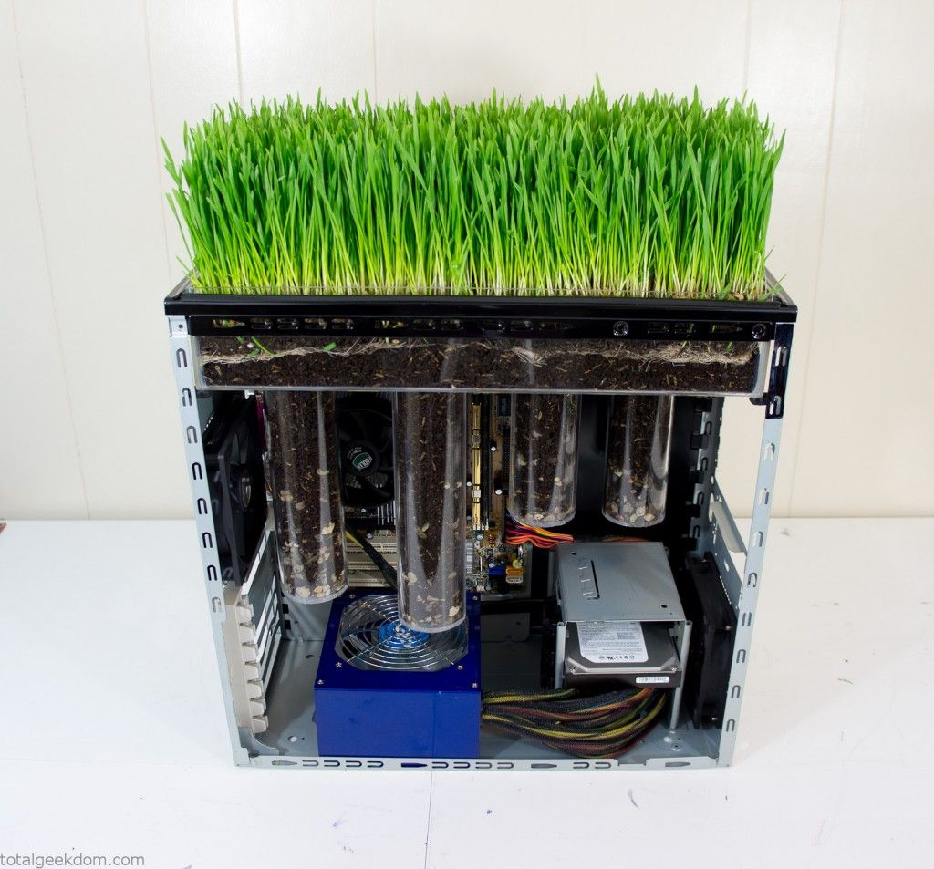 Mike Schropp over at TotalGeekdom has taken the flora/fauna desktop mod a step further, actually modifying his own working PC to grow wheatgrass from atop its tower.    Stuck on the idea that the heat produced by a computer could be harnessed to encourage germination and growth in plant life, Schropp, hardly a botanist, poured over various university studies and papers.