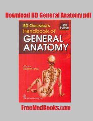 BD Chaurasia Human Anatomy PDF – All 3 Volumes PDF