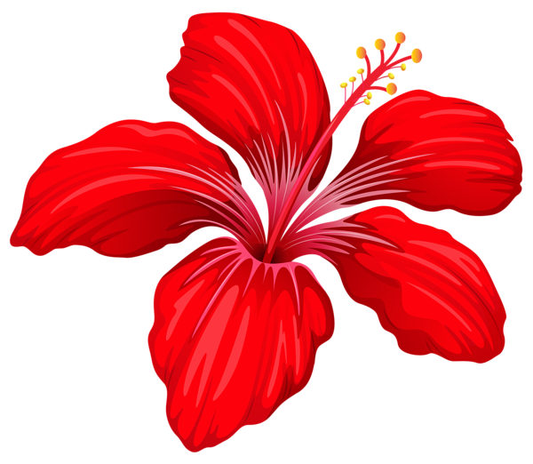 Pin by kůsová on Clipart Flower png images, Red flowers