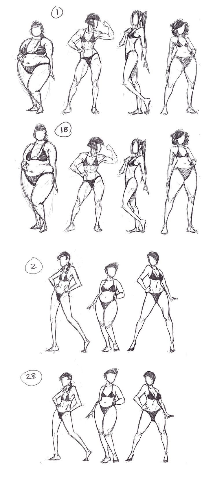 Female Anatomy Different Body Shapes Drawing Reference Drawing
