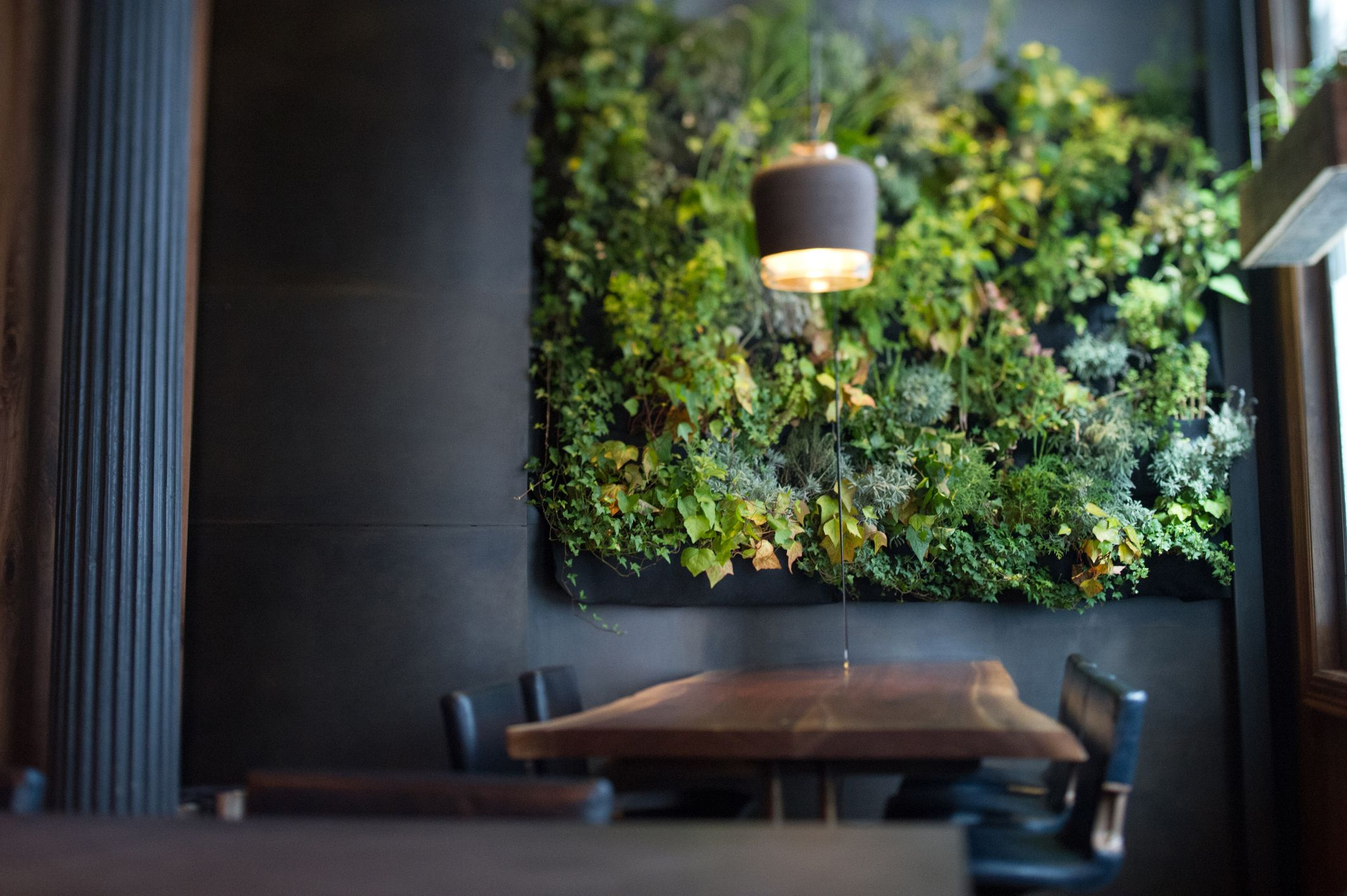 Communal Table Herb Wallplant