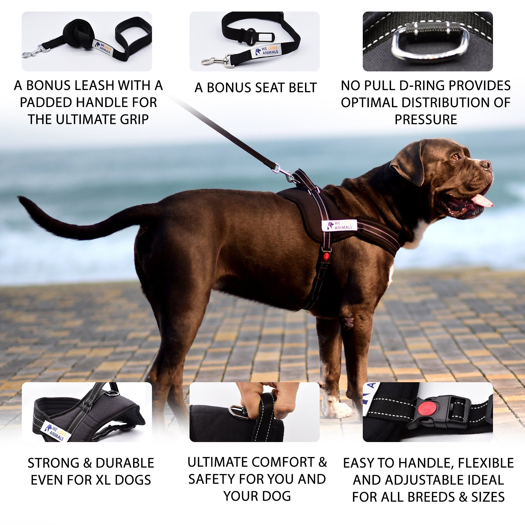 Padded Dog Harness Set No More Struggling Easy And Full Control
