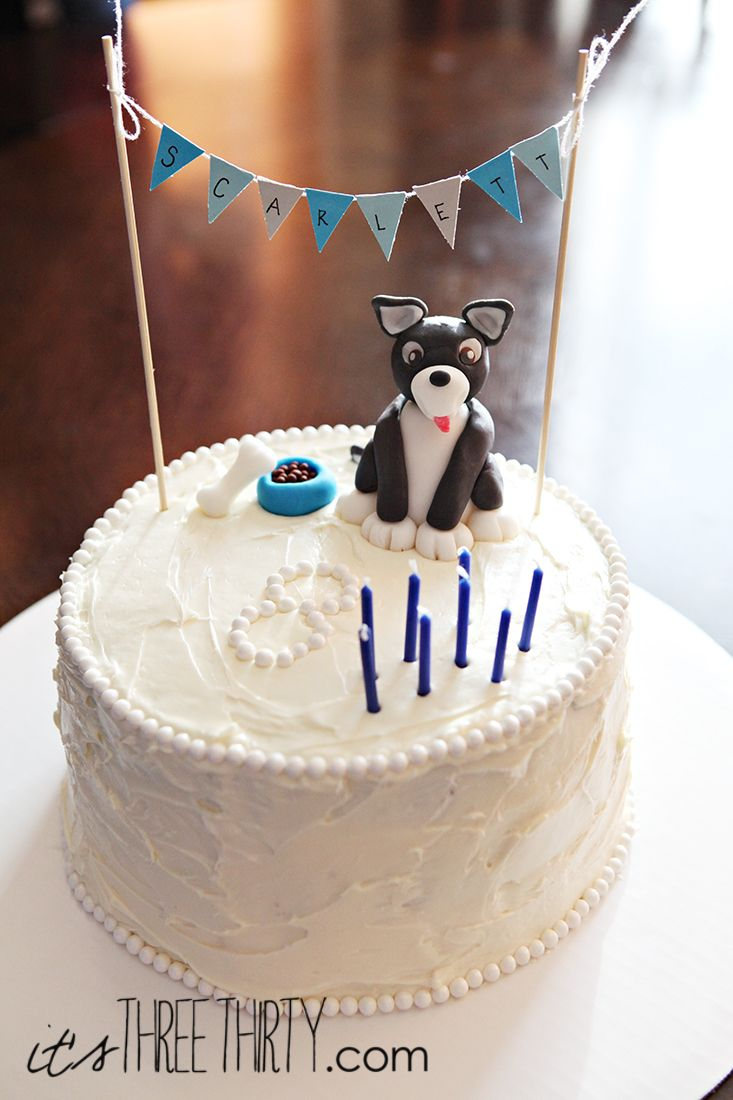 Puppy birthday cake perfect for a boy or a girl itsthreethirty