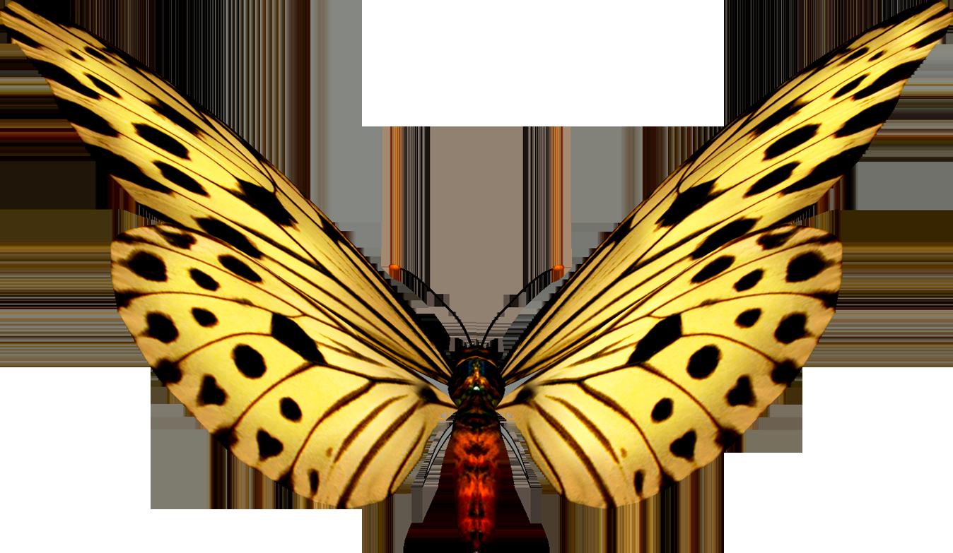 Imagenes De Mariposas Brillantes  PARA VER LA COLECCION COMPLETA
