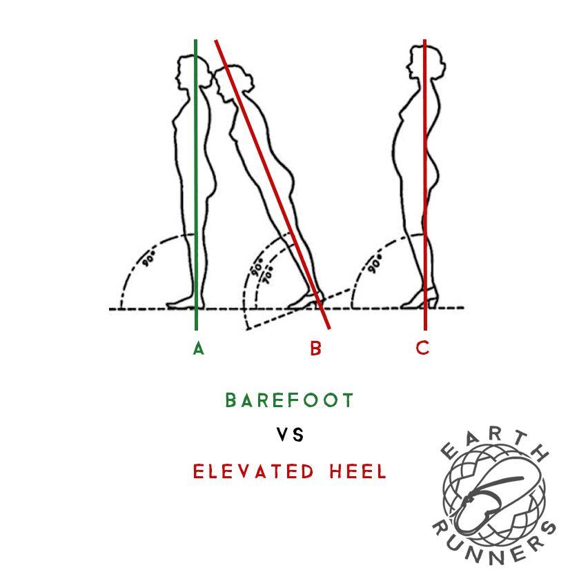 First Rule Of Optimal Footwear Avoid Heeled Shoes Heeled Footwear Is A Major Culprit For Mobility Issues At Body Posture Running Mechanics Zero Drop Shoes