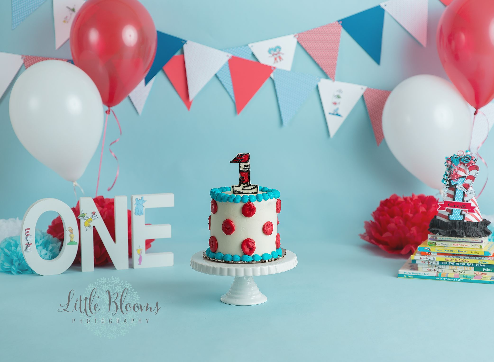 Red White And Blue Dr Seuss Cake Smash First Birthday Baby