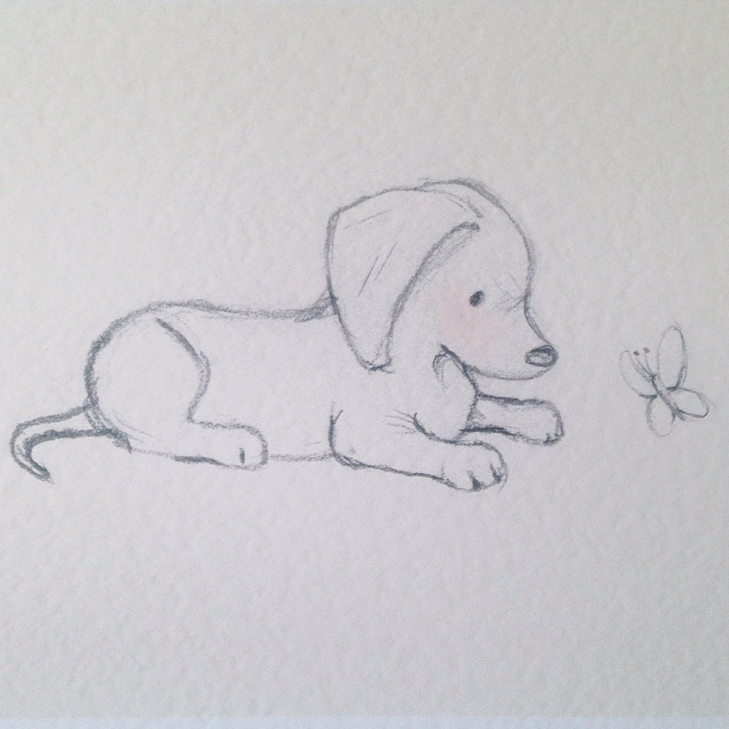 Puppy Collection Dachshund And Butterfly Disegni Di Animali