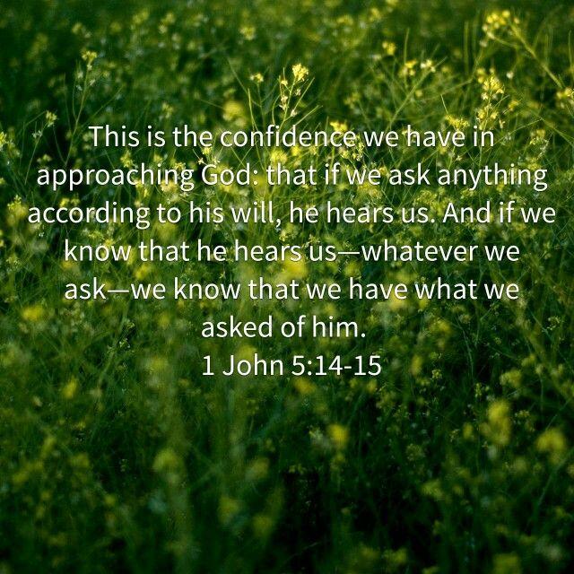 1 John 5:14,15
