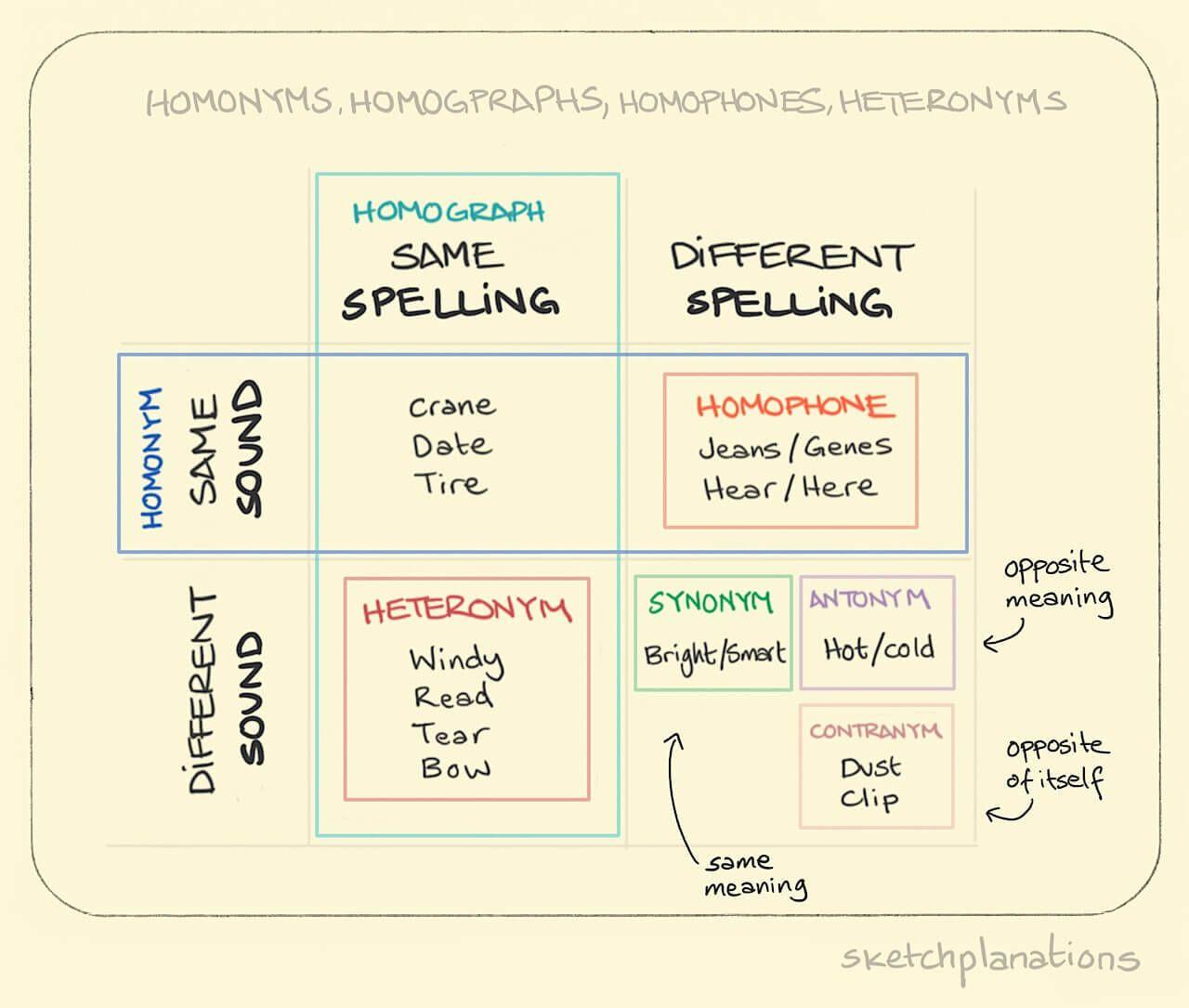 Homonyms Homographs Homophones Heteronyms This One
