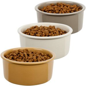 Grreat Choice Dog Bowl Petsmart Dog Food Recipes Dog Bowls Petsmart