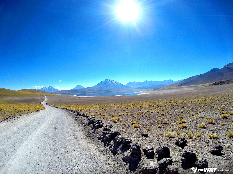 Lagunas Altiplânicas, o passeio mais bonito do Atacama