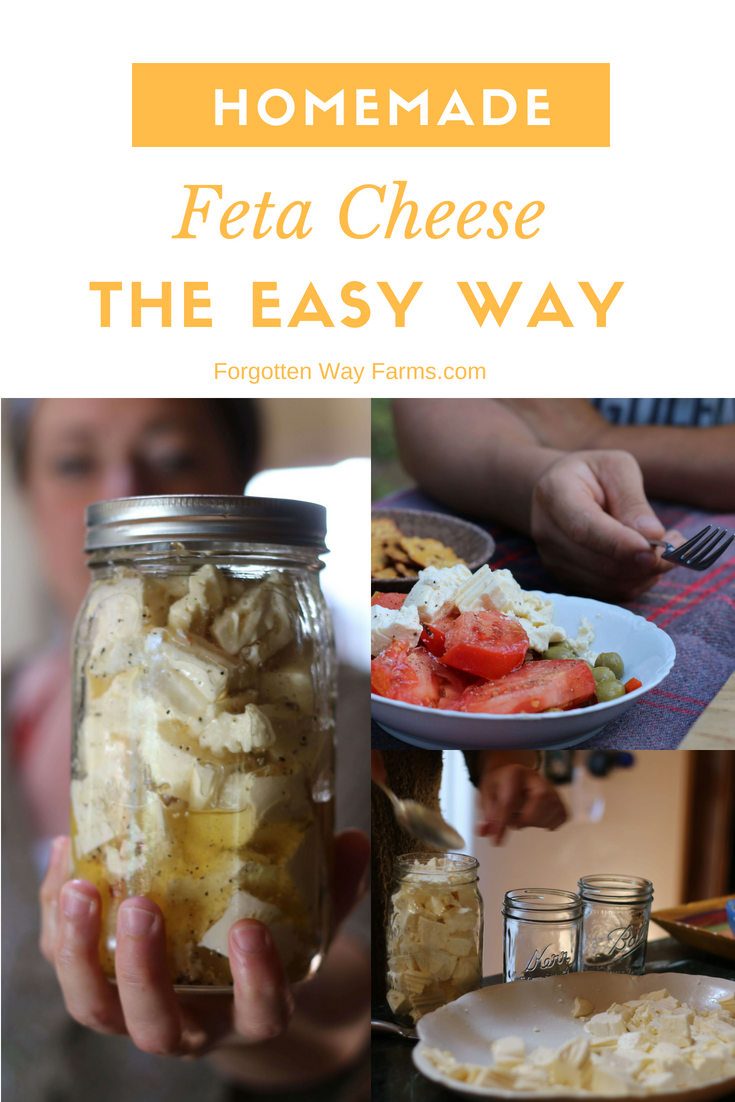 WHY YOU SHOULD MAKE HOMEMADE FETA CHEESE No fancy equipment is necessary! It's easy peasy The taste is amazing.