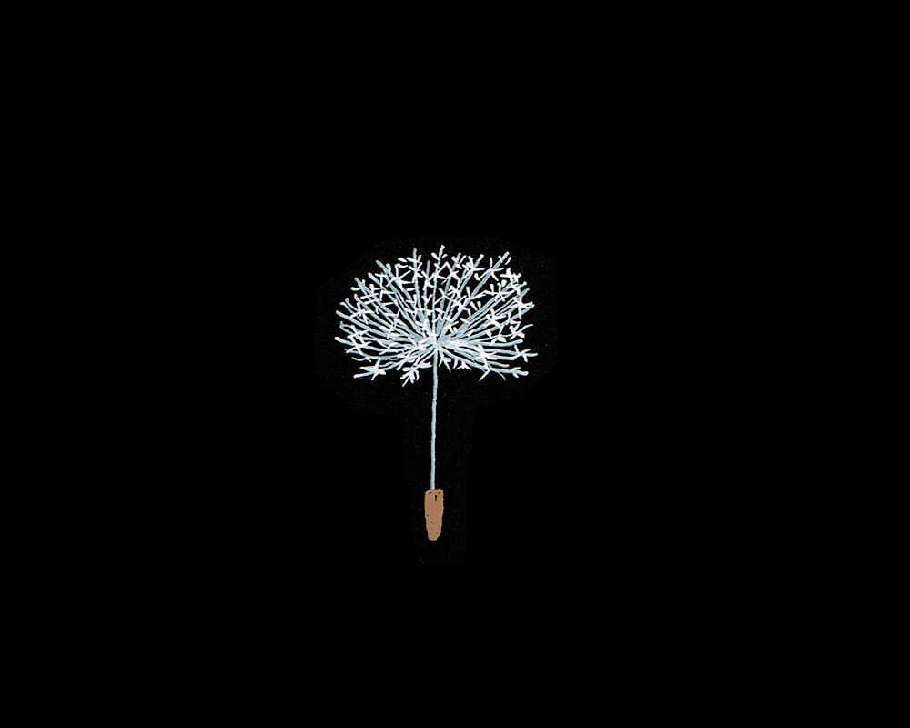 ボード お花 のピン