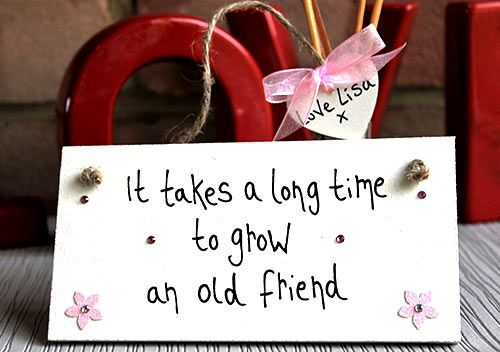 Friendship Plaques And Signs Gift It Takes A Long Time To Grow Friend 899 Friends Bestfriends Goodfriends Instafriends Friendsforever
