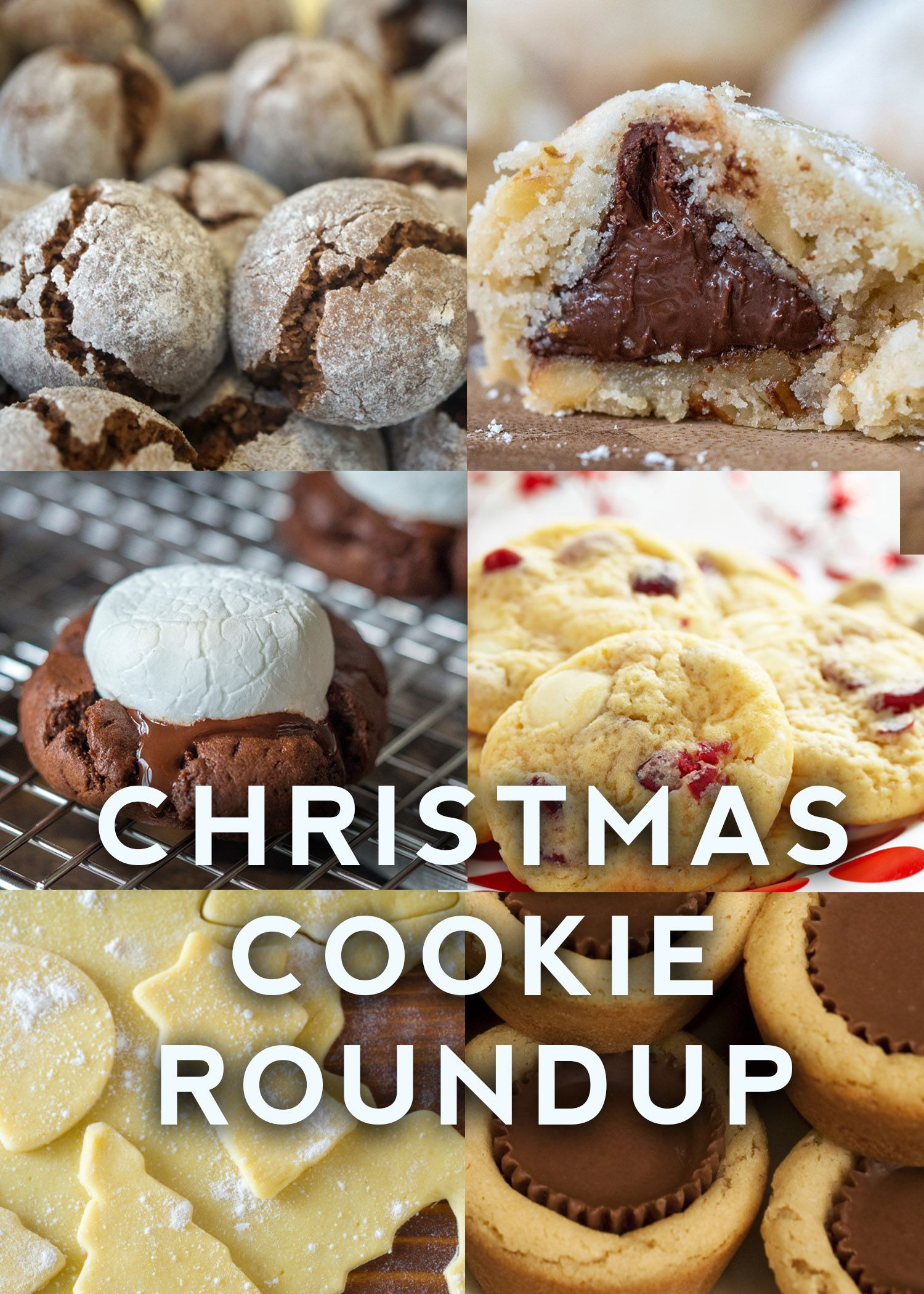 Christmas Cookie Roundup All The Best Recipes In Time For The