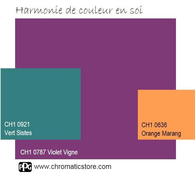 Finalisez votre projet peinture avec le violet vigne ch1 for Association couleur peinture