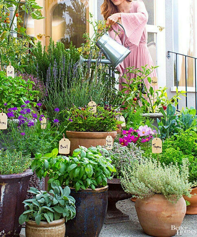 Beautiful Outdoor Container Herb Garden When Combining Various Kinds Of Herbs In Your Her In 2020 Container Herb Garden Balcony Herb Gardens Patio Container Gardening