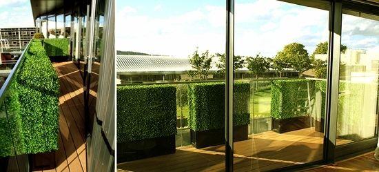 Balkon Geländer-Glas Begrünung-als Sichtschutz | terrasse | Pinterest
