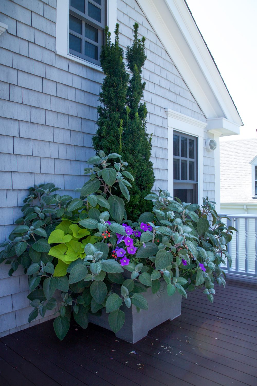 In home garden ideas   Garden Ideas to Steal from Provincetown on Cape Cod  Planters