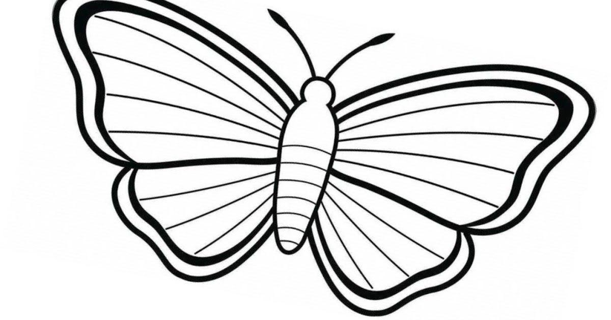 11 Schmetterling Malvorlagen Schmetterlingszeichnung Malvorlagen Kostenlose Ausmalbilder