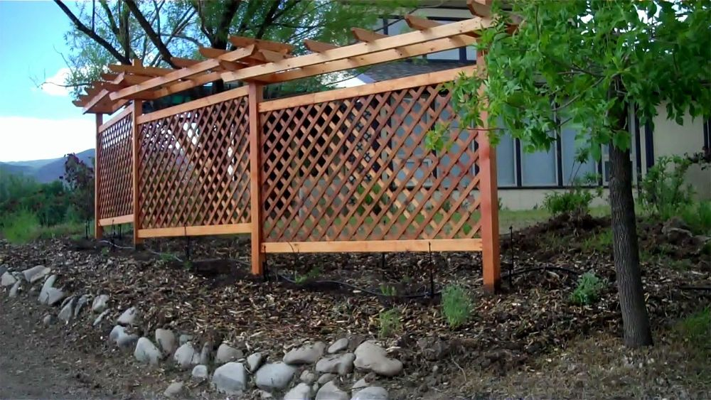 grapevine trellis designs