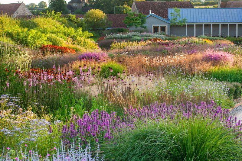 Piet Oudolf At Hauser Wirth In Somerset Landscape Design Garden Inspiration Prairie Garden