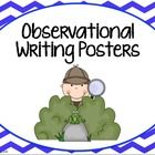 These posters explain observational writing!  $2.00